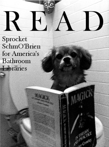 SprocketReads