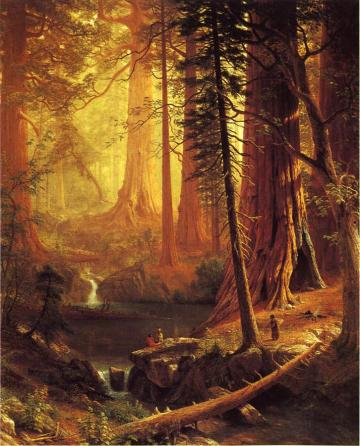 giant-redwood-trees-of-california-1874